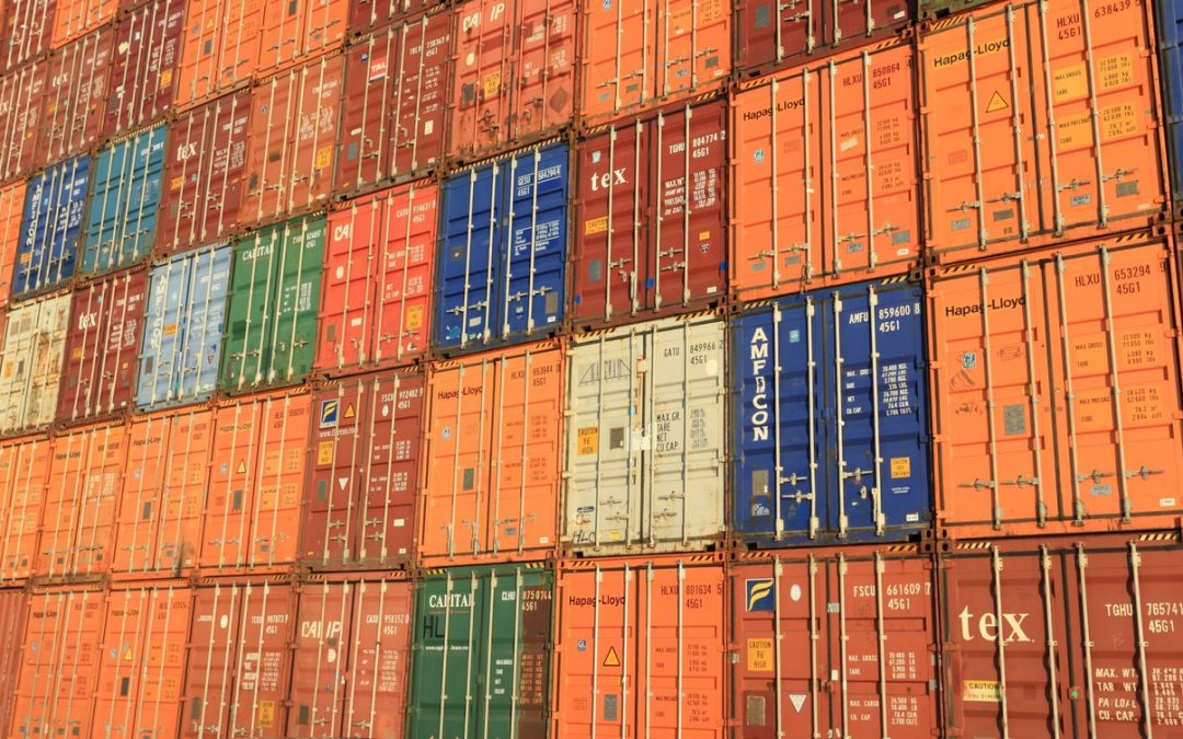 Jak wygląda logistyka produktów świeżych